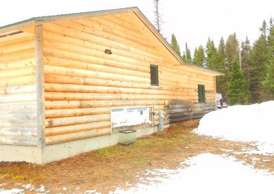 Log Home Refinishing Photo WI